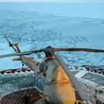 Арктический верт
