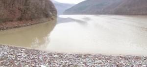 Вільшанське водосховище тоне в смітті